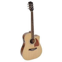 stålsträngad gitarr richwood